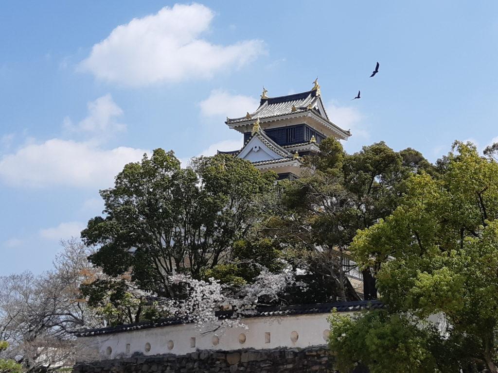Okayama et vol oiseaux