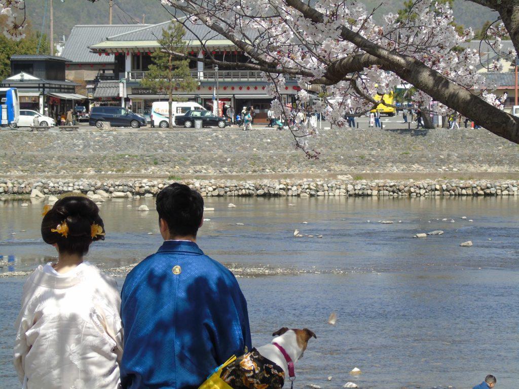 Arashiyama couple